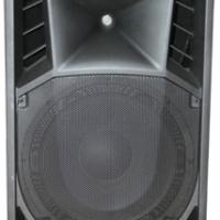 Large picture Molded cabinet speaker