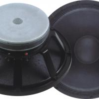 Large picture woofer speaker