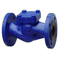 Large picture Din Check Valve