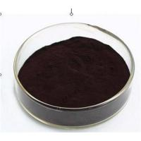 Large picture Bilberry Extract 25% Anthocyanidins