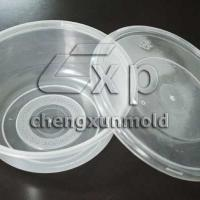 Large picture storage box container mould transparent case