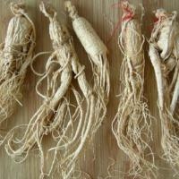 Large picture Supply Ginseng Extract Powder