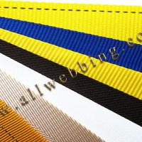 Large picture Polyester webbing
