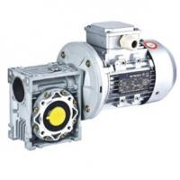 Large picture Worm Gear Motor(0.06kw-7.5kw)