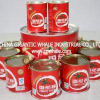 Large picture tomato paste 70g