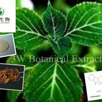 Large picture Yohimbine Extract