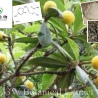 Large picture Griffonia Simplicifolia Seed Extract