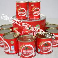 Large picture tomato paste  4.5kg