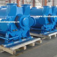 Large picture 2BE3 Series Liquid Ring Vacuum Pump and compressor