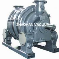 Large picture CL series liquid ring vacuum pump