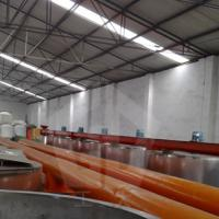 Large picture Scrper conveyor
