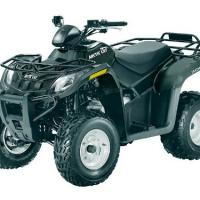 Large picture 2013 Arctic Cat 300