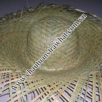 Large picture straw hat