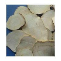 Large picture White Atractrylodes Extract