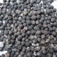 Large picture Vitex/Chasteberry Extract