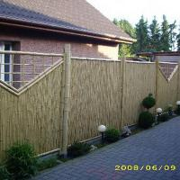 Large picture bamboo fencing lagre