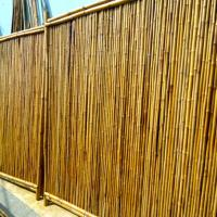 Bamboo fence full panel