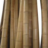 Large picture Bamboo pole cheap