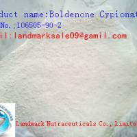 Large picture 99% Purity Boldenone Cypionate