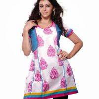 Large picture Indo-western kurti